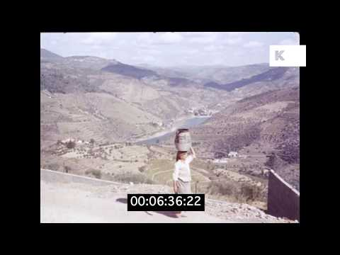 1960s Northern Portugal, Vineyard Terraces, HD from 35mm | Kinolibrary