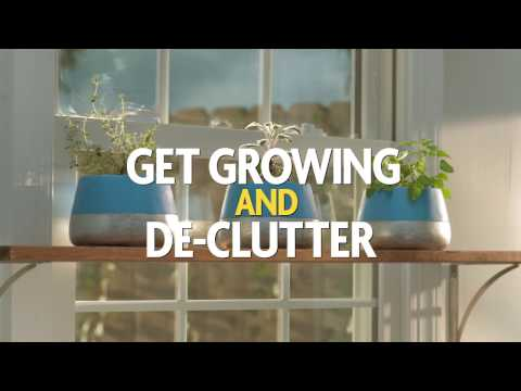 It's Time to Get Growing and De-Clutter With a Windowsill Garden