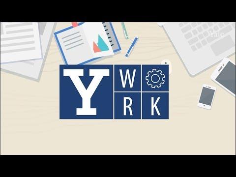 Inaugural Y-Work Award Winners Showcase Student Jobs