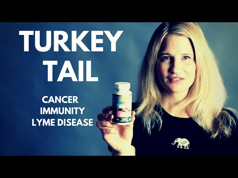 Cancer-Fighting Supplement Also Boosts Immune System - Turkey Tail Health Benefits - Earth Clinic