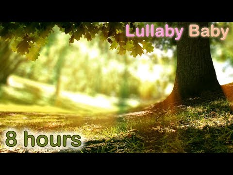 ✰ 8 HOURS ✰ Lullaby Music ♫ Baby Sleep Music ♫  Harp, Flute, Birdsong ✰ Relaxing Music for Babies