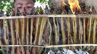 Mini Eel Grilling with Yummy Sauce / Eating Eel with Rice