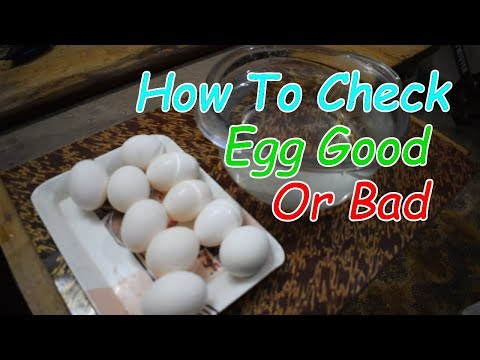 How To Check Whether Egg Is Good Or Bad - Science Experiment