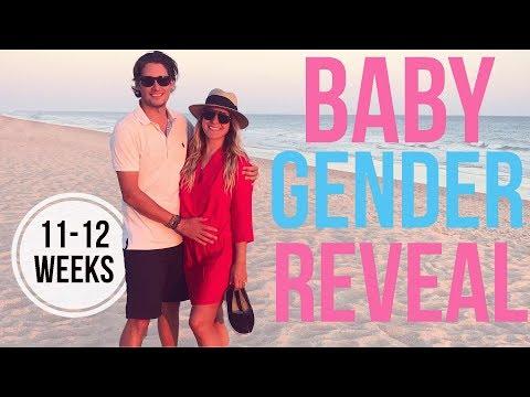 GENDER REVEAL & Pregnancy Chat: 11-12 Weeks!