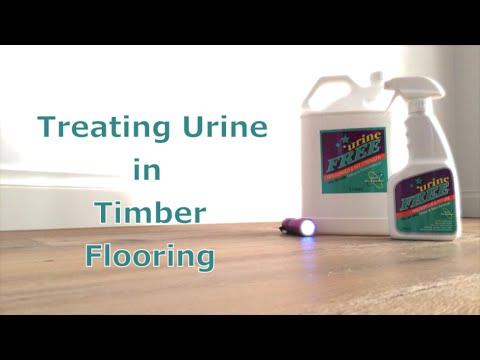 urineFREE: Removing Urine in Timber Flooring