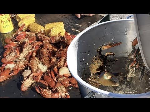 Crawfish Catch Clean Cook - Catching by Hand Net & Traps - Boiling Crawdads Outdoors