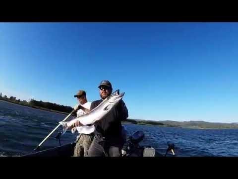 Columbia River Steelhead & King Salmon