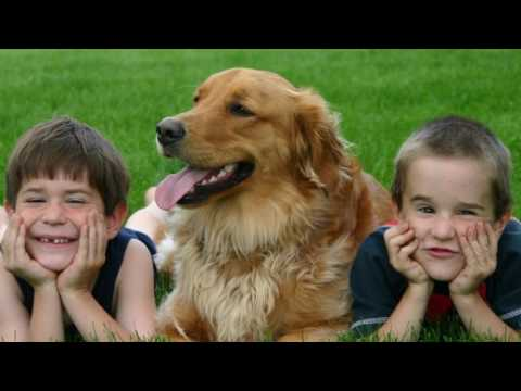 New research suggests that children bond more with their pets than with their siblings