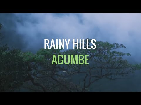 Rainy hills, Agumbe, Hill station, Western Ghats, Shimoga