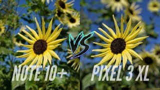 Samsung Galaxy Note 10 Plus vs Google Pixel 3 XL Camera Comparison