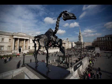 Skeleton horse erected in London's Trafalgar Square