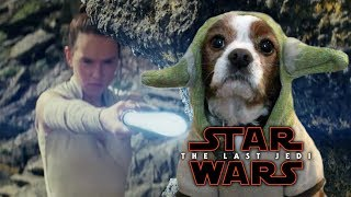 Star Wars: The Last Jedi Trailer - Yoda Dog