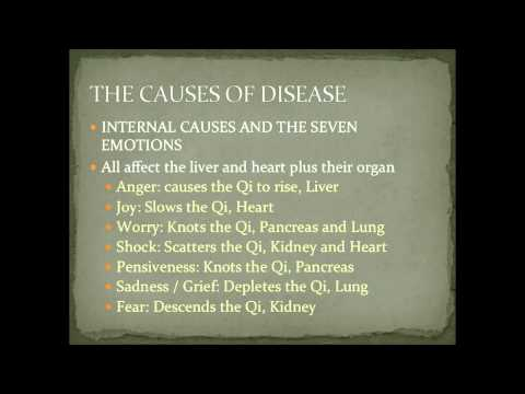 Internal Causes of Disease and the Seven Emotions in Chinese Medicine