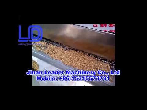 video of floating fish feed pellet machine