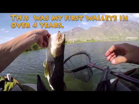 Bass and Walleye fishing Utah