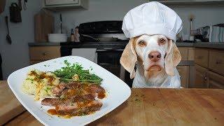 Chef Dog Cooks Steak Dinner for Friends: Funny Dog Maymo