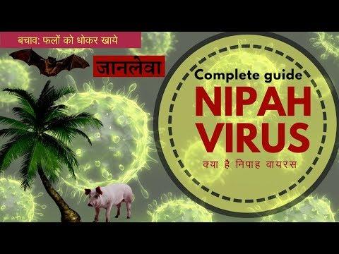 current affair : nipah virus । क्या है निपाह वायरस | Nipah Virus effect | Compition exam question