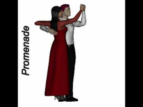 Learn to Dance - Ballroom Positions.mp4