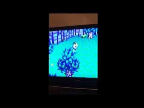 Animal Crossing City Folk: Tarantula Attack