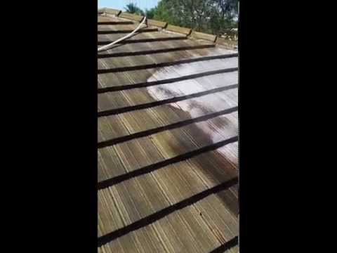 Non-Pressure Chemical Tile Roof Cleaning in West Palm Beach, FL 561-781-4297
