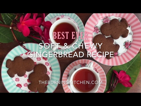 Best Ever Soft and Chewy Gingerbread Recipe