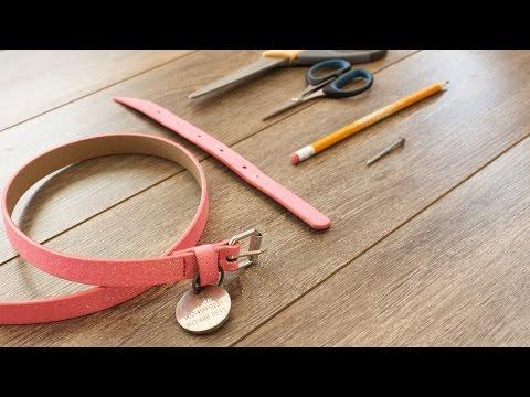 DIY Dog Collar