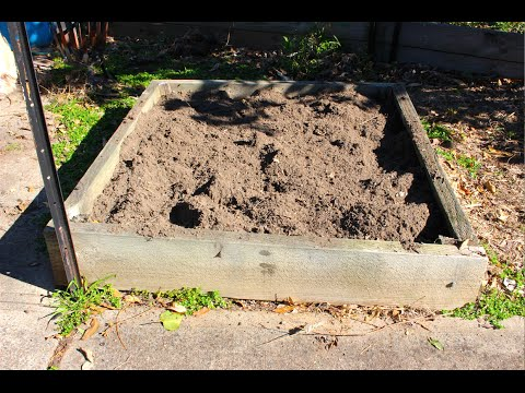 How to prepare a raised garden bed for planting