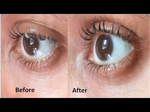 Apply Coconut Oil To Grow Long Eyelashes FAST | Thick Eyelashes, fast Eyelashes Hair Growth