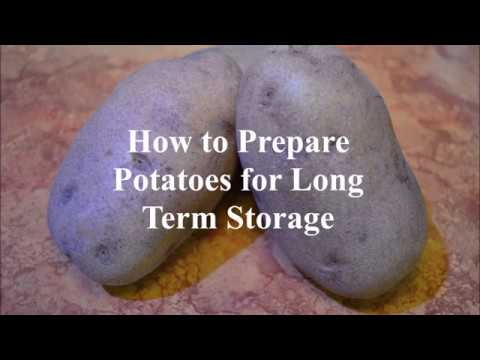 How to Prepare Potatoes for Long Term Storage