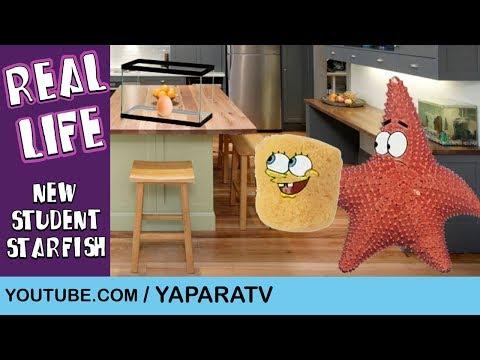 SpongeBob Squarepants in Real Life 4