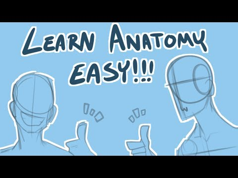 FireAlpaca Tutorial: Learn Anatomy Fast! *Speedpaint Commentary*