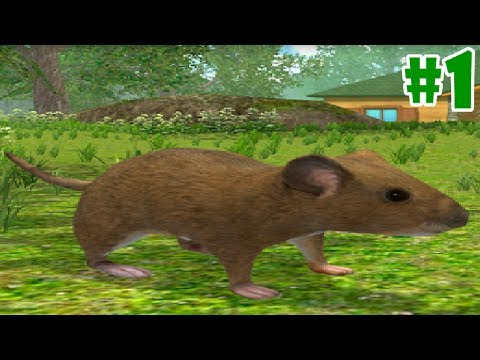 Mouse Simulator By Avelog  - Android/iOS - Gameplay Episode 1