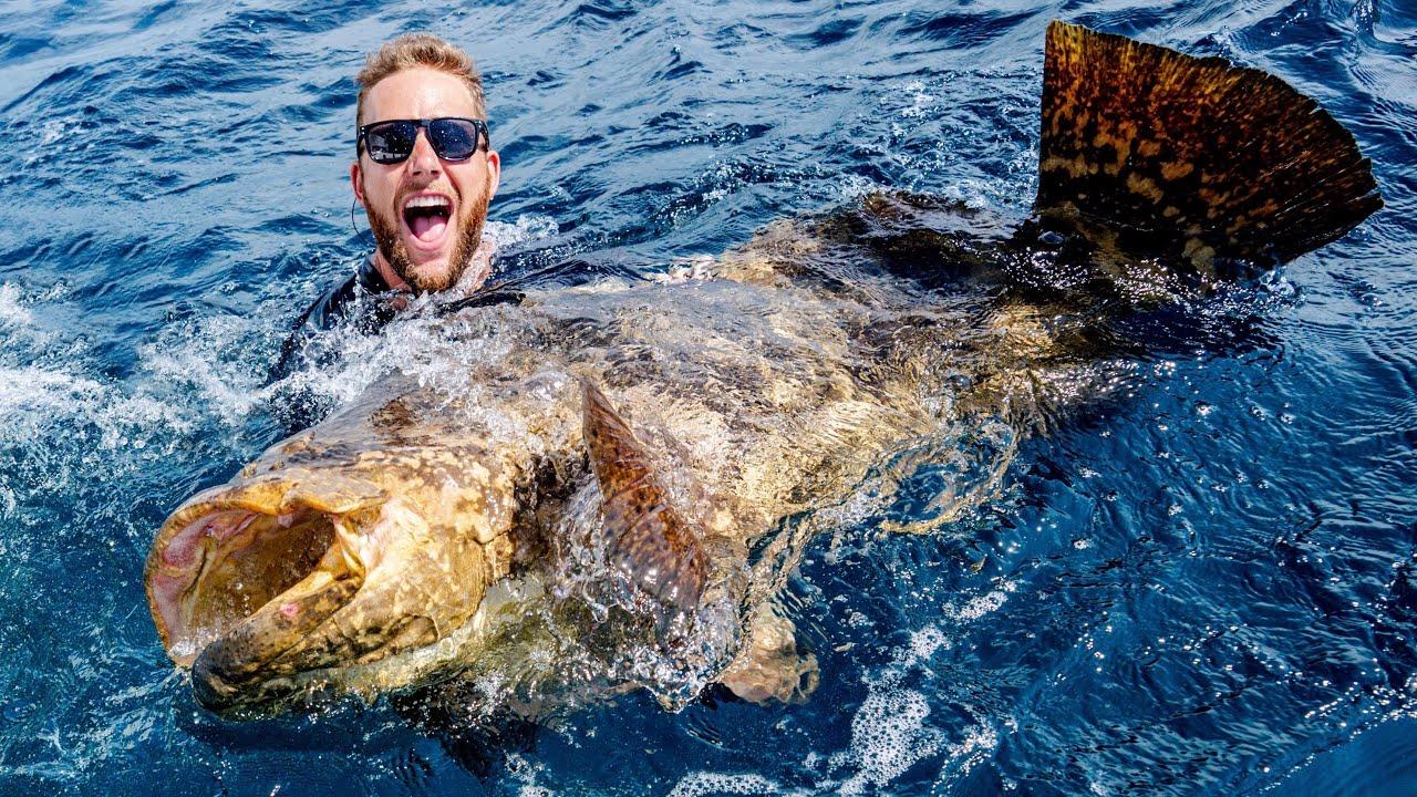 Giant Grouper Fishing Battle