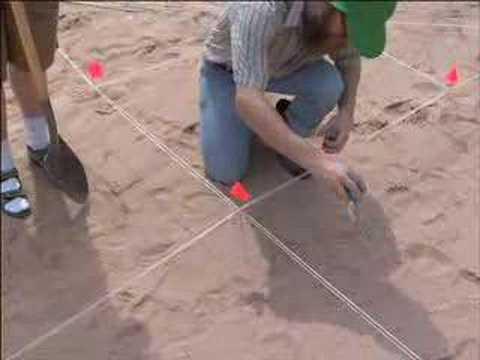How to Find Dinosaur Bones