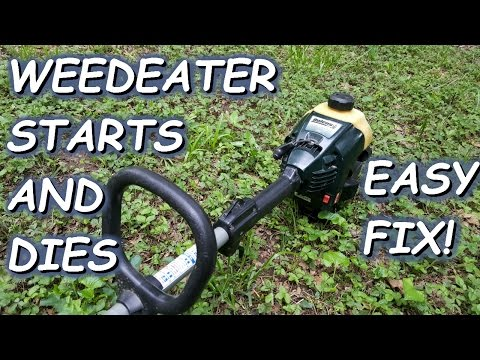 Weedeater starts but dies. Easy quick fix.