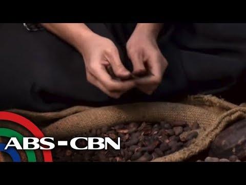 Wellness drives growth of Cebu-based chocolate maker