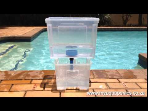 RIP Bell Siphon - The Myaquaponics VFS (Vertical Float Siphon) is here