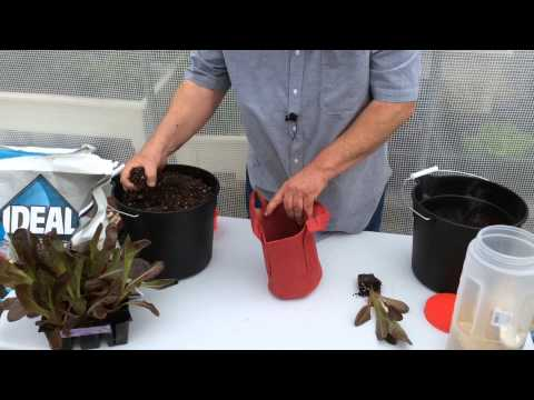 How To Plant 1 Gallon Designer Grow Bags For The Gro-Matic Planter