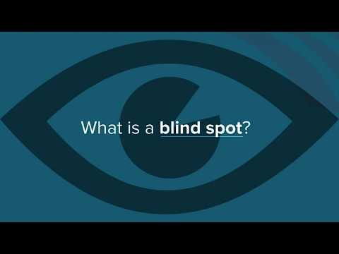 What is a SaaS Environment Blind Spot?