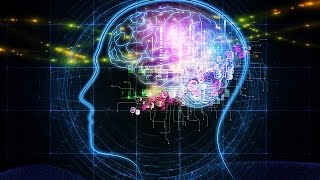The Human Brain  Science Discovery Documentary HD
