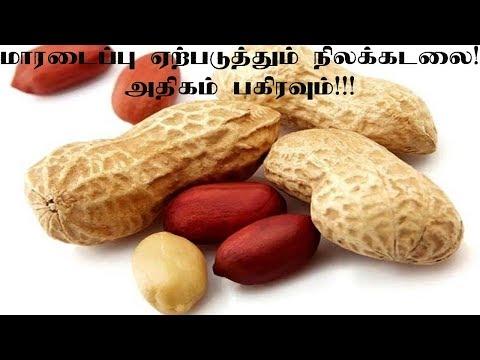 Demerits of Groundnuts|Tamil News|
