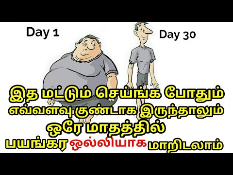 How to Reduce Belly Fat Naturally in 30 Days | Summer weight loss Diet Plan