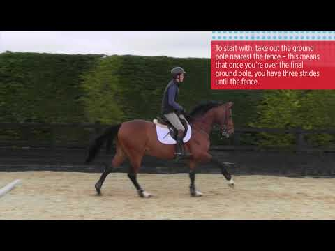 How to start jumping bigger fences with Tim Stockdale | Horse&Rider
