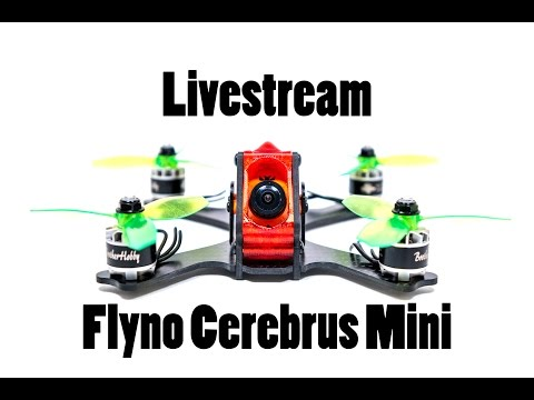 Livestream // Cerebrus Mini