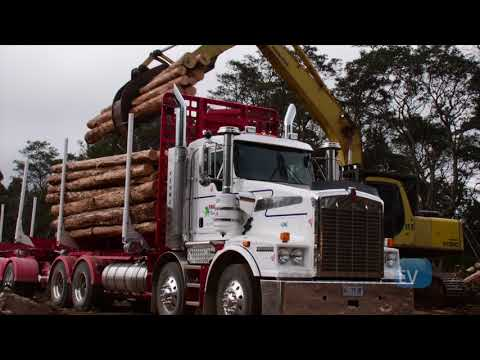 Extreme Truckers go logging in a Kenworth T659 8x4 fitted with AIR-CTI