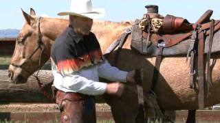 The Proper Way To Cinch A Saddle Wwwthinklikeahorseorg Rick Gore Hors