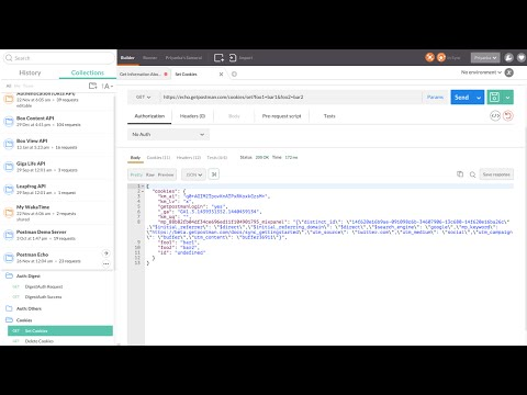 How to use the Postman API Response Viewer
