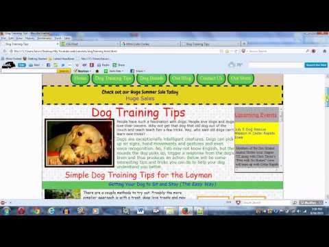 Create a Webpage using HTML and CSS part 3