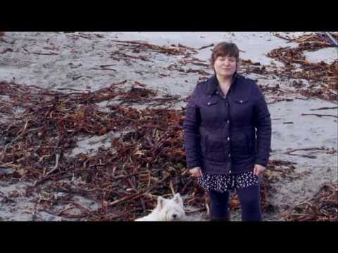 Shetland Resolve Fear of Flying