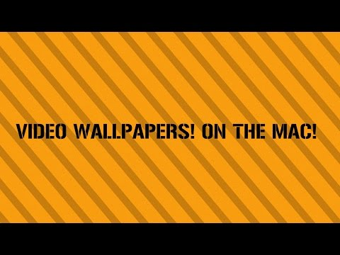 ►How to make a video as your wallpaper on the Mac | Evolved Gaming